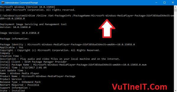 Dism Online Get-PackageInfo PackageName