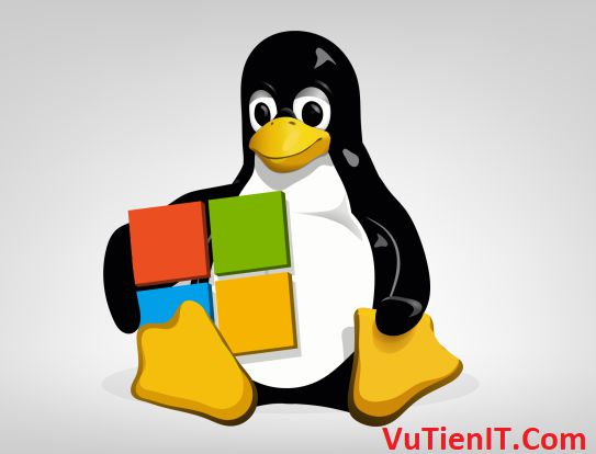 Windows Server linux