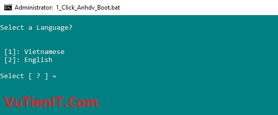 tao usb boot