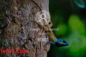 fix user cannot change password windows 10