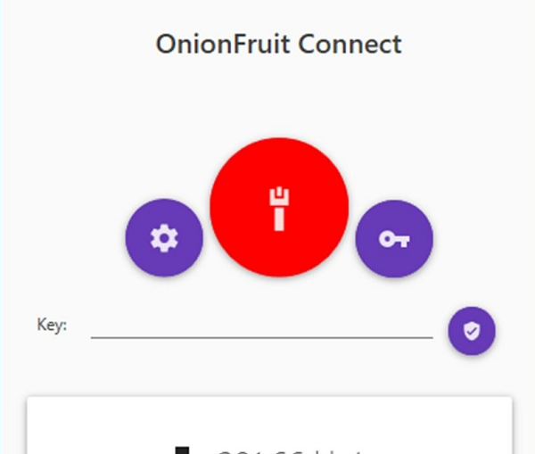 OnionFruit Connect 2020