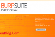 Burp Suite Professional 2020 active